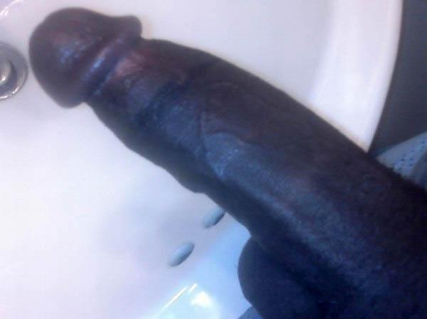 Black cock for white ladies