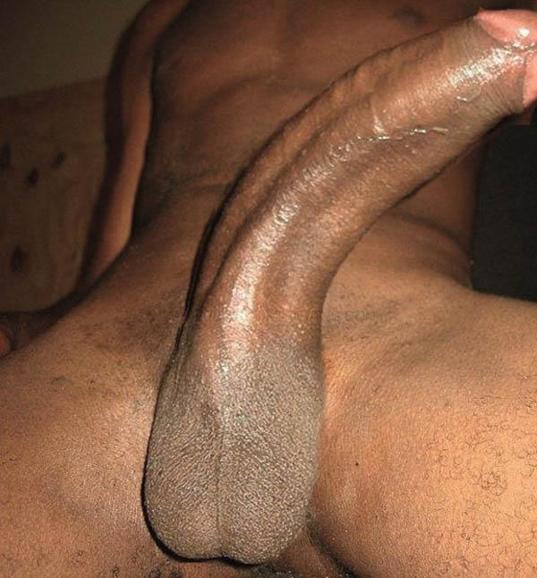 Black Black Cock Gay Long Black Cock black fuck long